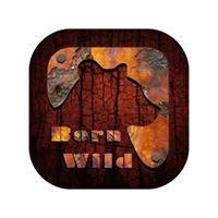 Born Wild - scuola di sopravvivenza csen-coni