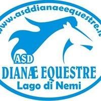 ASD Dianae Equestre - Centro Equitazione - Scuola Pony