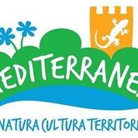 Associazione Mediterranea
