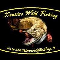 Trentino Wild Fishing