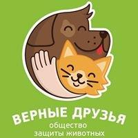 """Приют для бездомных животных """"Верные Друзья"""" Калуга"""