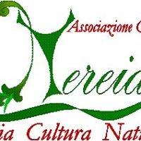 Associazione Culturale Nereide