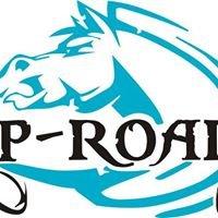 Rip Roarin'- PVC Bags & products - Rug Repairs- Horse Supplies