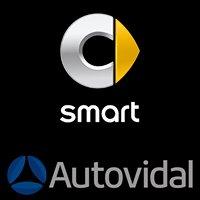 Smart-AutoVidal