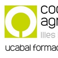 Cooperatives Agro-alimentàries Illes Balears