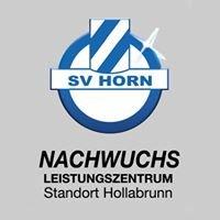 NLZ SV Horn