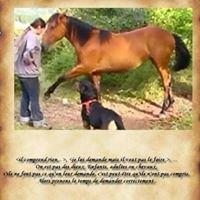 L'Equitation Autrement