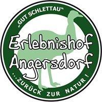 Erlebnishof Angersdorf