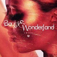 Boogie In Wonderland