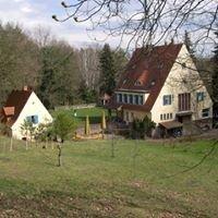 Villa Jühling e.V.