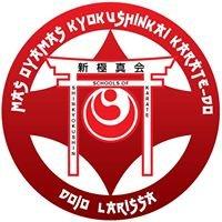 A.C. ShinKyokushinkai Karate Larissas