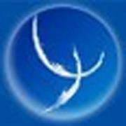 Copib - Col·legi Oficial de Psicòlegs de les Illes Balears