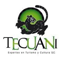 Tecuani Expertos en Turismo y Cultura S.C.