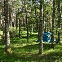 Camping Lamas De Mouro -