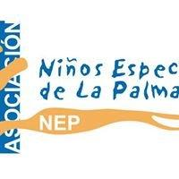 Asociación Niños Especiales De La Palma