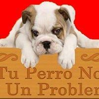 Tu Perro No Es Un Problema