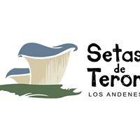 Setas de Teror, Los Andenes