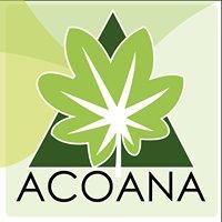 Acoana