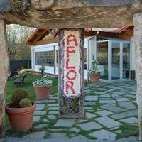 Asociacion de floristas de Ourense AFLOR