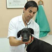 Clínica Veterinaria Corvet