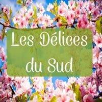 Les Délices du Sud Arles