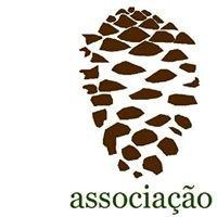 PINEA - Associação Florestal Litoral
