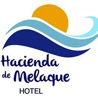 Hotel Hacienda de Melaque