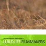International Association of Wildlife Filmmakers