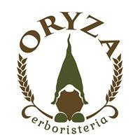 Erboristeria Oryza