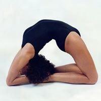 Yoga Studio Marta Mahou