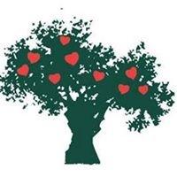 Fundación Hipercolesterolemia Familiar