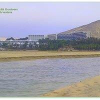Hotel Meliá Gorriones