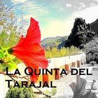 La Quinta del Tarajal, La Palma, Canarias.