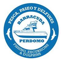 Barracuda Perdomo Excursiones y Pesca