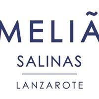 Meliá Salinas
