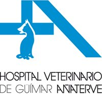 Hospital Veterinario Añaterve