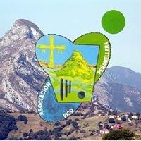 Asociación Pico Peñamellera