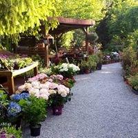Tienda Botánica