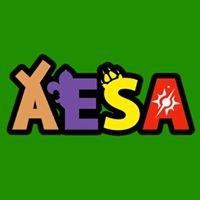 AESA - Agrupamento de Escuteiros de Santo Afonso