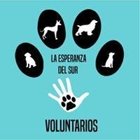 Voluntarios CPA La Esperanza del Sur