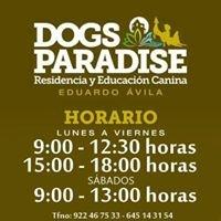 Residencia y Educación Canina DOGS Paradise, Eduardo Ávila