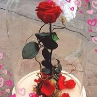 Floristeria Tegueste bodas y eventos Miguel Angel