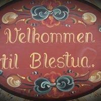 Blestua