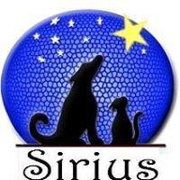 Sirius Canarias Tenerife