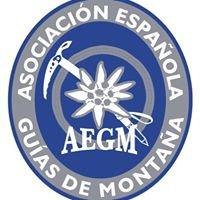 Guías AEGM