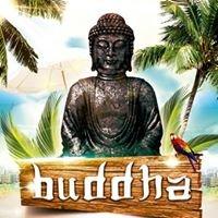 Buddha Argamasilla