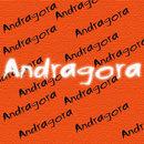 ANDRAGORA