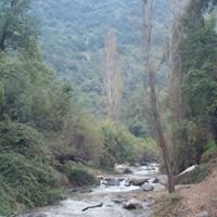 Santuario de la Naturaleza, El Arrayan