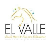 Caballos Gran Canaria - Finca el Valle