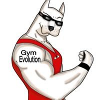 Gym evolution Beniel